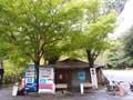 sakuraya_m
